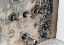 Mold Damage Claims Broward