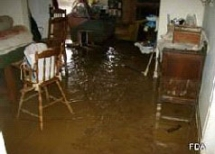 Flood Public Adjuster Miami